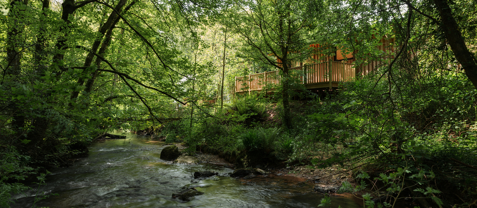 Luxury Holiday Lodges near the South Devon Coast